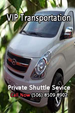 Private Transportation